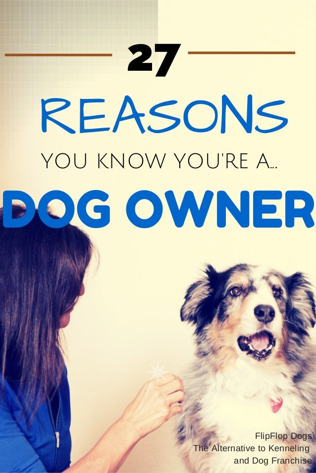 YOU KNOW YOU'RE A... DOG OWNER REASONS 27 FlipFlop Dogs The Alternative to Kenneling and Dog Franchise