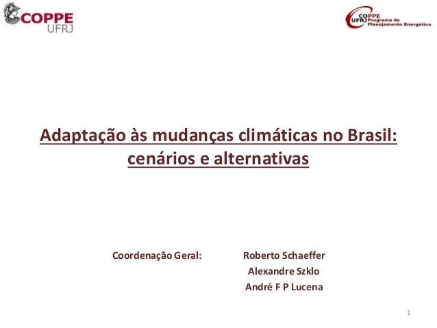 Adaptação às mudanças climáticas no Brasil: cenários e alternativas Coordenação Geral: Roberto Schaeffer Alexandre Szklo A...