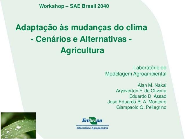 Adaptação às mudanças do clima - Cenários e Alternativas - Agricultura Laboratório de Modelagem Agroambiental Alan M. Naka...