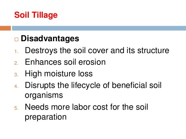 disadvantages of soil pollution
