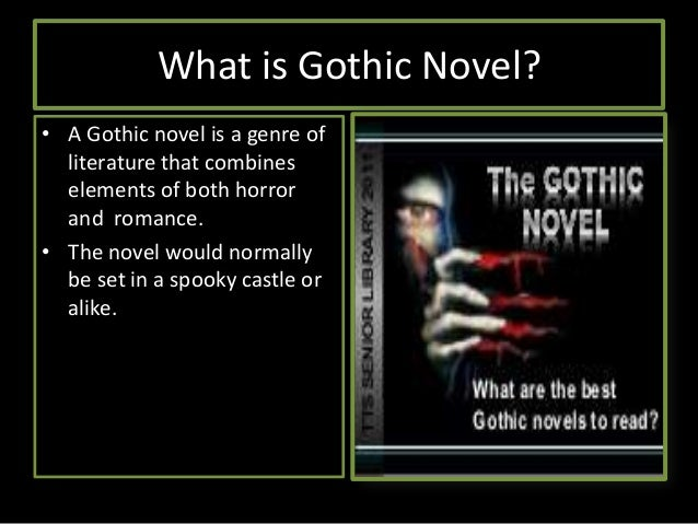 a research on gothic novels in english literature