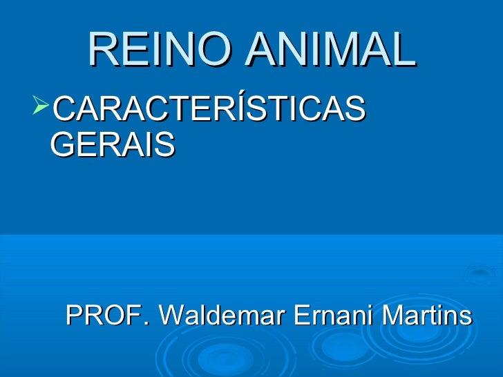 REINO ANIMALCARACTERÍSTICASGERAIS PROF. Waldemar Ernani Martins
