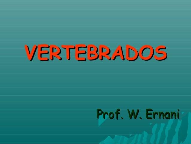 VERTEBRADOSVERTEBRADOS Prof. W. ErnaniProf. W. Ernani