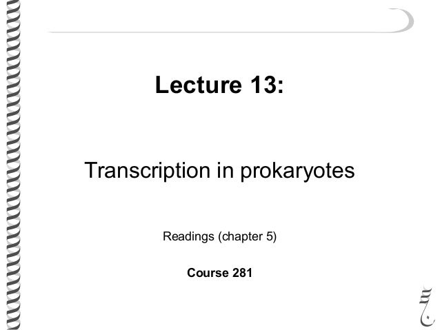 Lecture 13: Transcription in prokaryotes Readings (chapter 5) Course 281