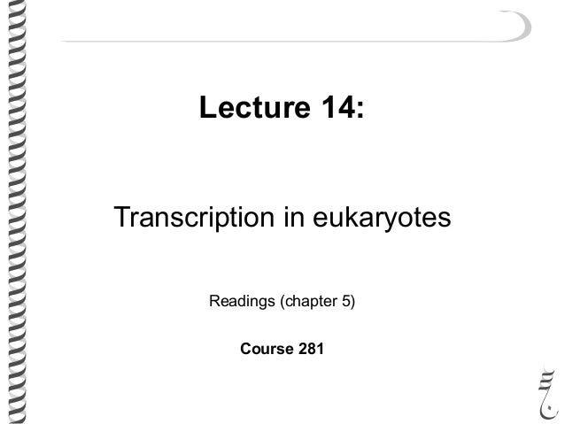 Lecture 14: Transcription in eukaryotes Readings (chapter 5) Course 281