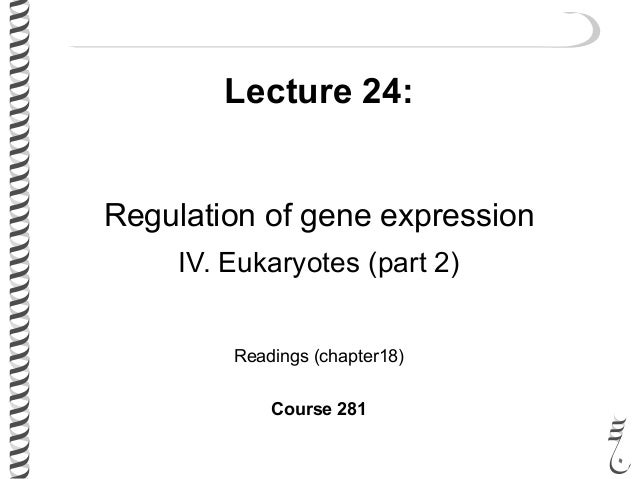 Lecture 24: Regulation of gene expression IV. Eukaryotes (part 2) Readings (chapter18) Course 281