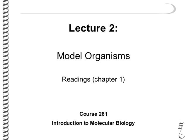 Lecture 2: Model Organisms Readings (chapter 1) Course 281 Introduction to Molecular Biology