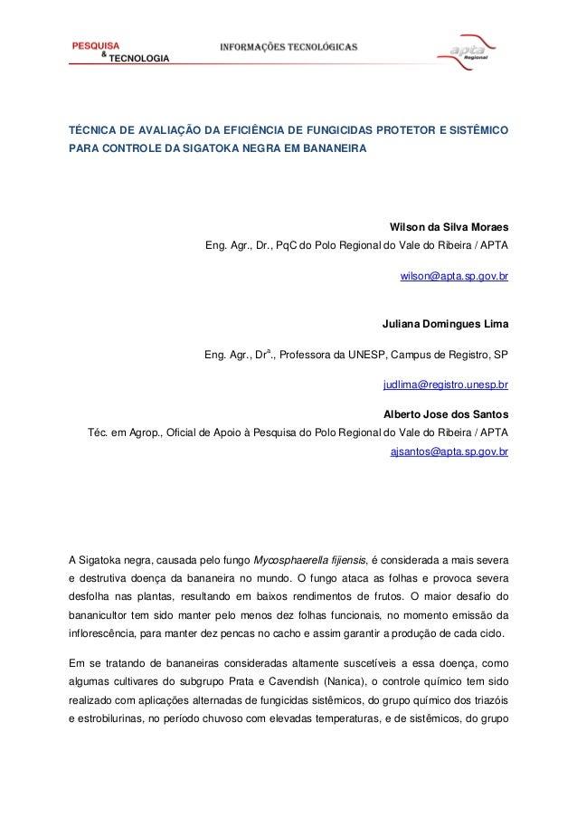 TÉCNICA DE AVALIAÇÃO DA EFICIÊNCIA DE FUNGICIDAS PROTETOR E SISTÊMICO PARA CONTROLE DA SIGATOKA NEGRA EM BANANEIRA Wilson ...