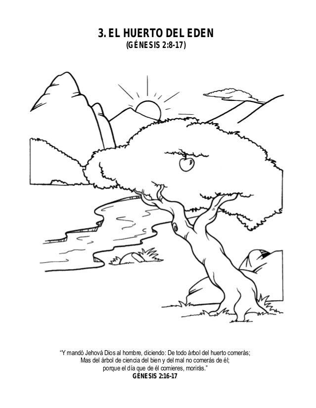 28614997 actividades para ninos antiguo testamento for Adan y eva en el jardin del eden para colorear