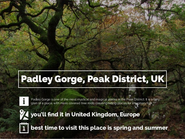 Padley Gorge, Peak District, UK  Padley Gorge is one of the most mystical and magical places in the Peak District. It is a...