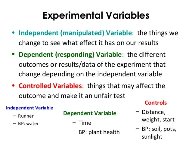 Science Inquiry Experiment Design