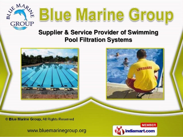 Supplier & Service Provider of Swimming         Pool Filtration Systems