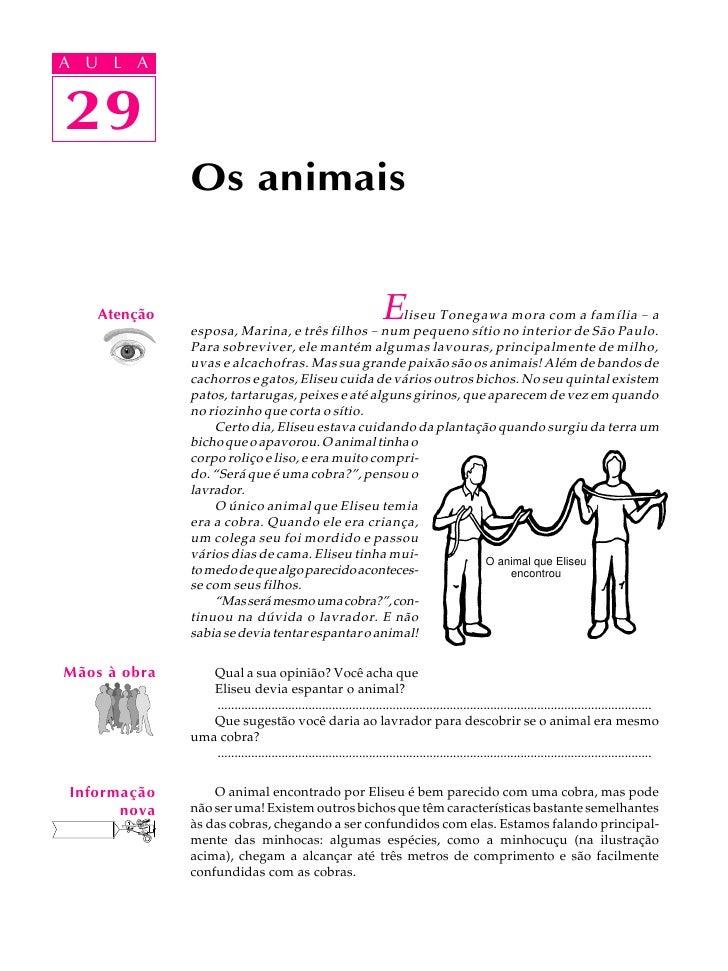 A UA U L A      L A      29 29               Os animais       Atenção                                                     ...