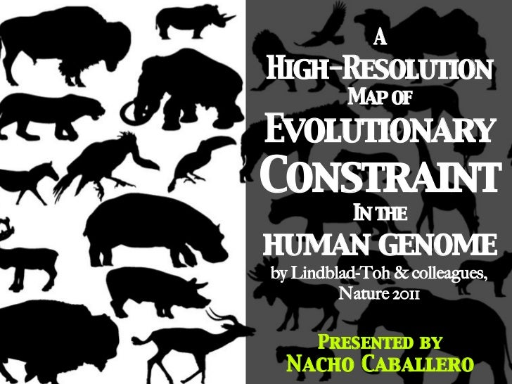 A 	High-Resolution 	          Map of 	Evolutionary	Constraint	          In the 	human genome	by Lindblad-Toh & colleagues,...