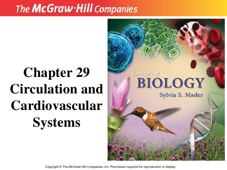 Copyright  ©  The McGraw-Hill Companies, Inc. Permission required for reproduction or display. Chapter 29 Circulation and ...