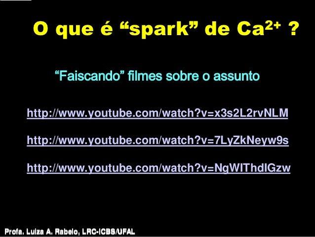 """O que é """"spark"""" de                               Ca 2+         ?              """"Faiscando"""" filmes sobre o assunto      http..."""