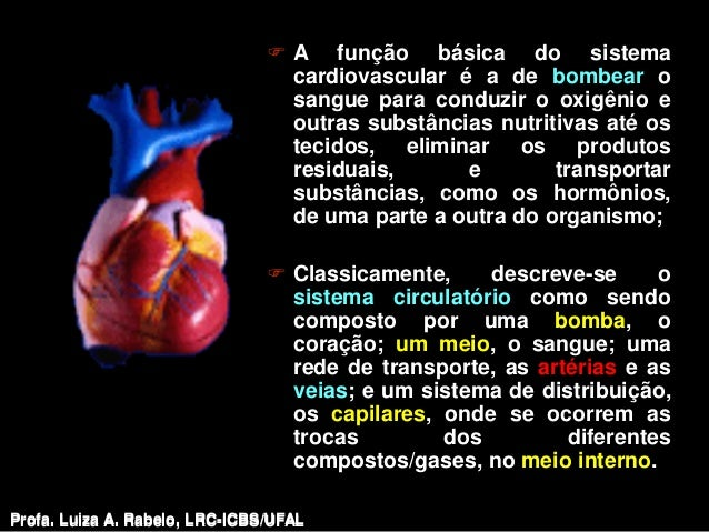  A função básica do sistema                                  cardiovascular é a de bombear o                             ...