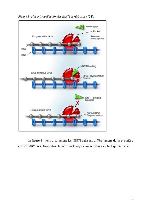 35   Figure  8  :  Mécanisme  d'action  des  INNTI  et  résistance  (24).             ...