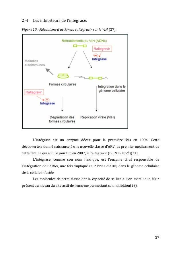 37   2-‐4   Les  inhibiteurs  de  l'intégrase:      Figure  10  :  Mécanisme  d'action  du...