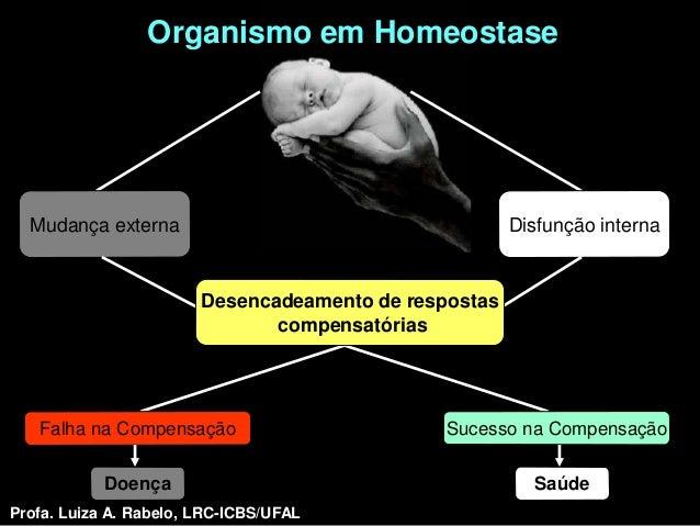 Organismo em Homeostase  Mudança externa                                       Disfunção interna                        De...