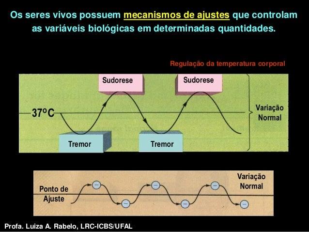 Os seres vivos possuem mecanismos de ajustes que controlam     as variáveis biológicas em determinadas quantidades.       ...