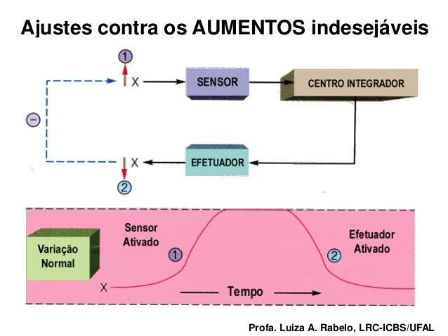 Ajustes contra os AUMENTOS indesejáveisProfa. Luiza A. Rabelo, LRC-ICBS/UFAL   Profa. Luiza A. Rabelo, LRC-ICBS/UFAL