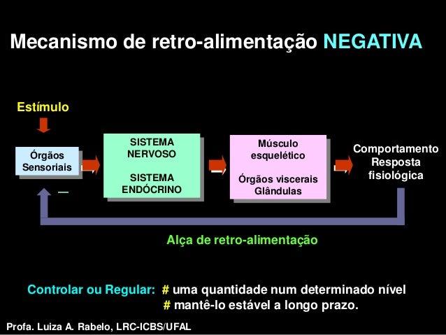 Mecanismo de retro-alimentação NEGATIVA  Estímulo                        SISTEMA               Músculo                    ...