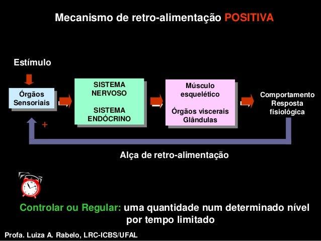 Mecanismo de retro-alimentação POSITIVA  Estímulo                        SISTEMA               Músculo   Órgãos           ...