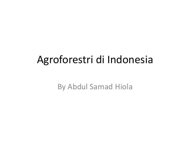 Agroforestri di Indonesia By Abdul Samad Hiola