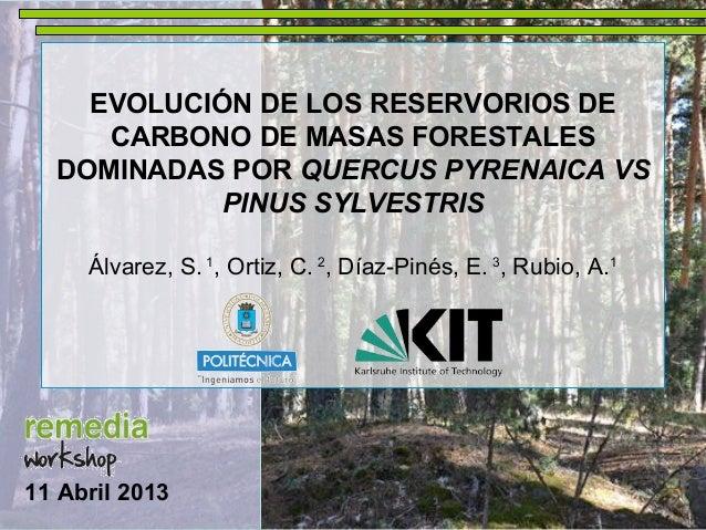 EVOLUCIÓN DE LOS RESERVORIOS DECARBONO DE MASAS FORESTALESDOMINADAS POR QUERCUS PYRENAICA VSPINUS SYLVESTRISÁlvarez, S. 1,...
