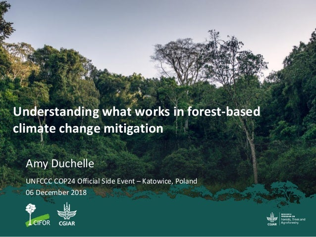 Understanding what works in forest-based climate change mitigation Amy Duchelle UNFCCC COP24 Official Side Event – Katowic...