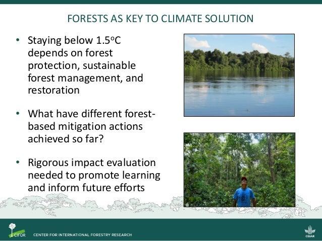 Understanding what works in forest-based climate change mitigation Slide 2