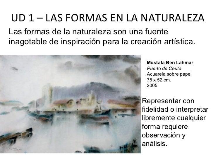 UD 1 – LAS FORMAS EN LA NATURALEZALas formas de la naturaleza son una fuenteinagotable de inspiración para la creación art...