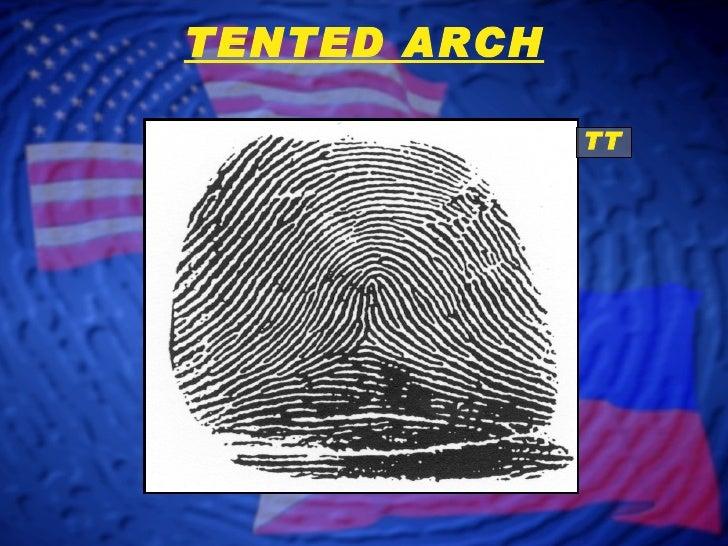 TT TENTED ARCH ... & Fingerprint Classification - Arch Patterns