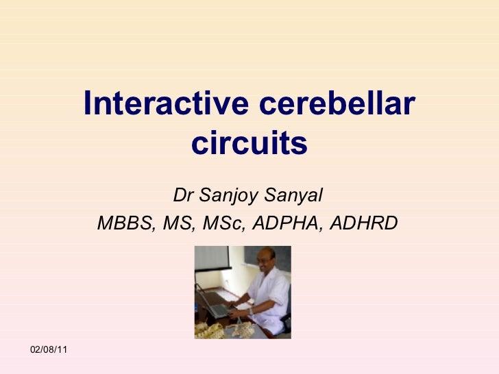 Interactive cerebellar circuits Dr Sanjoy Sanyal MBBS, MS, MSc, ADPHA, ADHRD