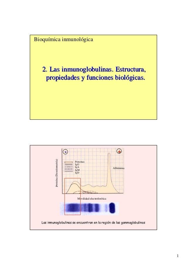 1 Bioquímica inmunológica 2. Las inmunoglobulinas. Estructura,2. Las inmunoglobulinas. Estructura, propiedades y funciones...