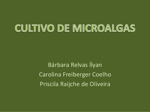 Bárbara Relvas ÍlyanCarolina Freiberger CoelhoPriscila Raijche de Oliveira
