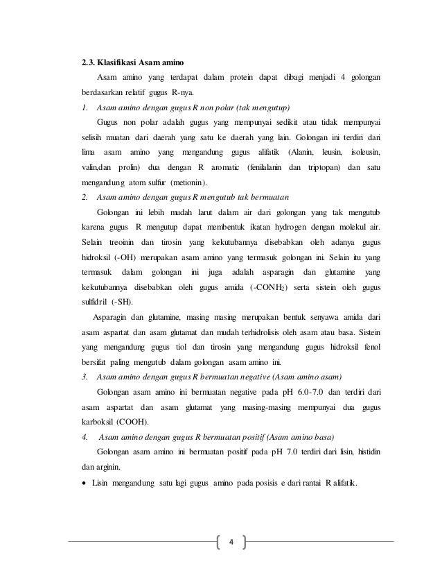 makalah METABOLISME PROTEIN