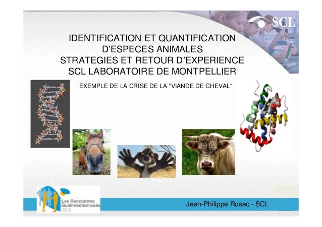 IDENTIFICATION ET QUANTIFICATION D'ESPECES ANIMALES STRATEGIES ET RETOUR D'EXPERIENCE SCL LABORATOIRE DE MONTPELLIER EXEMP...