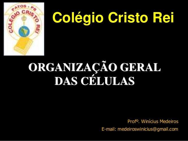 ORGANIZAÇÃO GERAL DAS CÉLULAS Profº. Winícius Medeiros E-mail: medeiroswinicius@gmail.com Colégio Cristo Rei