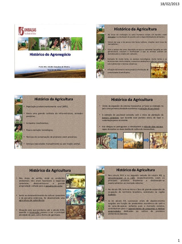 18/02/2013 1 Histórico do Agronegócio Profa.MSc. Ariádila Gonçalves de Oliveira Fevereirode 2013. Histórico da Agricultura...