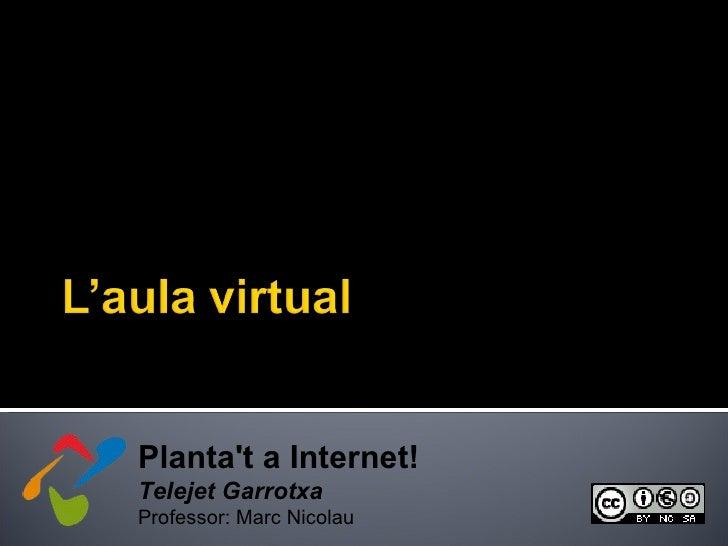 Planta't a Internet! Telejet Garrotxa Professor: Marc Nicolau