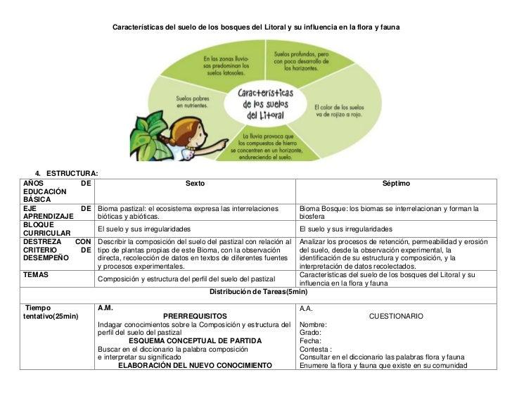 Características del suelo de los bosques del Litoral y su influencia en la flora y fauna   4. ESTRUCTURA:AÑOS         DE  ...