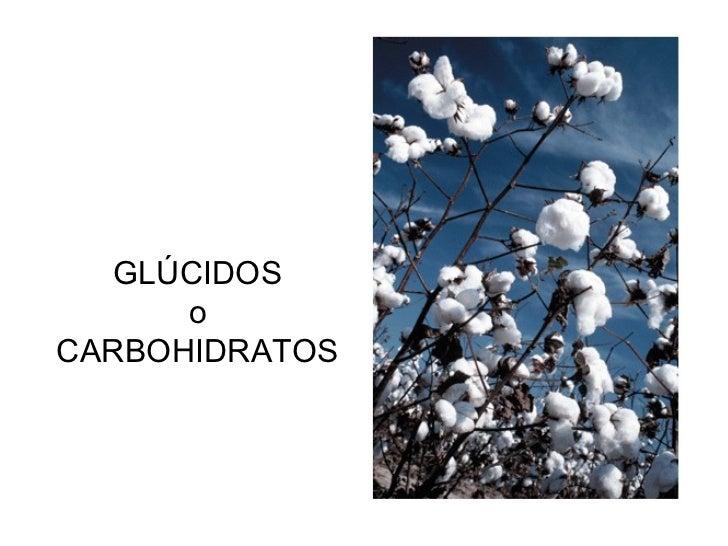 GLÚCIDOS      oCARBOHIDRATOS