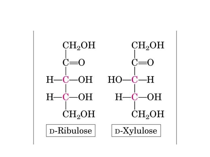 • en los aminoácidos se considera grupo  funcional al grupo amino (NH2) del  segundo carbono (carbono α) L-aminoácido     ...