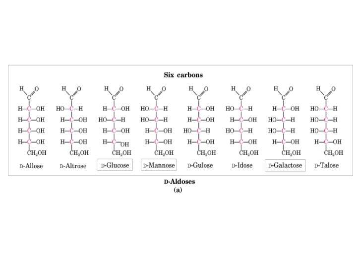 Animaciones de monosacáridos  http://www2.uah.es/biomodel/model3j/redir.htm?monosac.htmv        Animación de glucosa en ag...