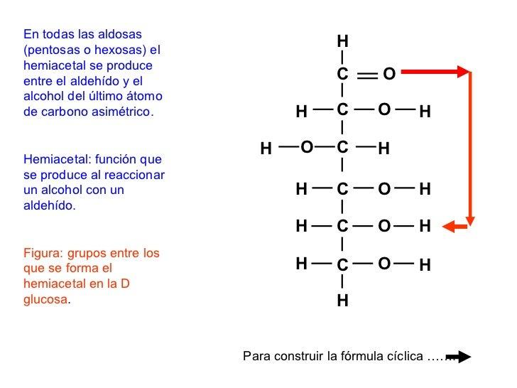 MONOSACÁRIDOS• Triosas: gliceraldehido, dihidroxicetona• Pentosas: ribulosa, ribosa, desoxirribosa• Hexosas: glucosa, fruc...