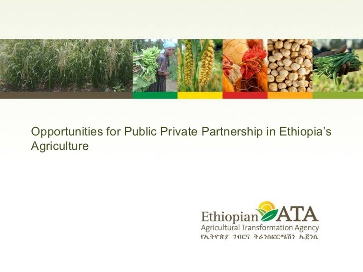 Opportunities for Public Private Partnership in Ethiopia 's Agriculture