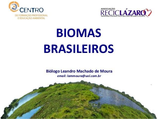 BIOMAS BRASILEIROS Biólogo Leandro Machado de Moura email: lammoura@uol.com.br