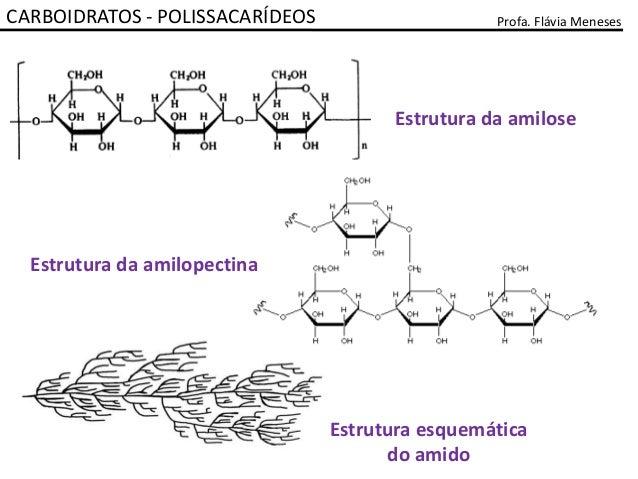 2 Carboidratos Polissacarideos